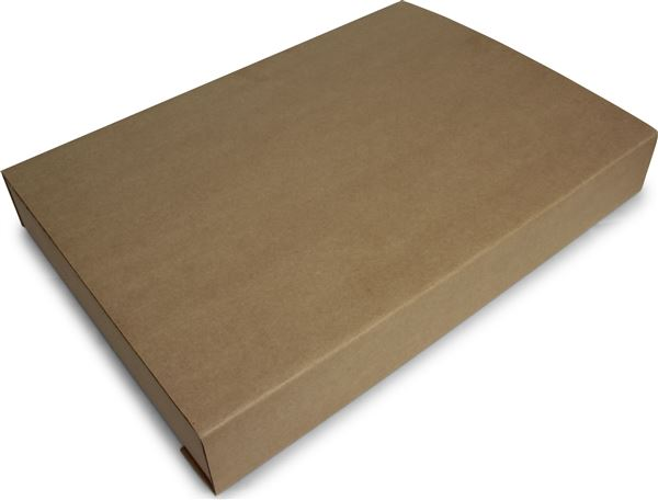 GRAFENTHAL IT PACKAGING 100PCS SIZE L FOR SYSTEMBOARDS PRODUCT SIZE 400x250x30 BOX SIZE 466x30x76MM